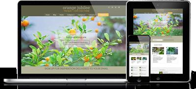 affordable website blog design