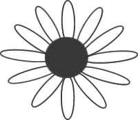 sunflower-black